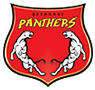Belagavi Panthers