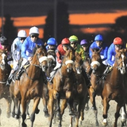 Wolverhampton Horse Racing Thursday 16 January 2014 Free Bets For Winners