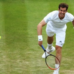 Andy Murray Wimbledon 2015